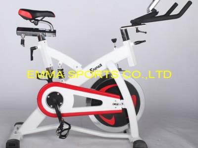 供应EMMAS-9001动感单车/家用动感单车