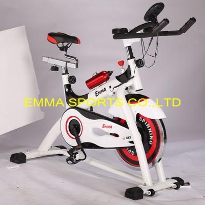 供应EMMAS-2000动感单车